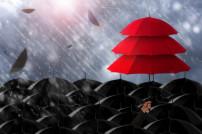 Ein roter Regenschirm unter vielen schwarzen Regenschirmen