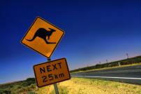 Känguru Schild Australien
