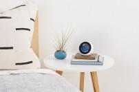Echo Spot von Amazon im Einsatz