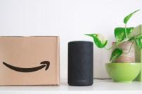 Alexa, Amazon-Paket und Pflanze