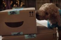 Hund leckt ein Amazon-Paket