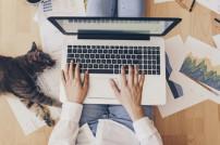 Homeoffice: Frau mit Laptop auf dem Schoß