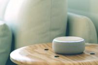 Alexa: Amazon-Lautsprecher auf einem Tisch