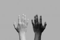Schwarze und weiße Hand