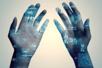 Hände als biometrische Zahlungsmittel