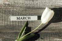 Blume und März