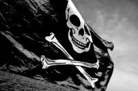 Piratenflagge: Produktfälschungen