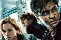 Harry Potter, Screenshot DVD 7.1