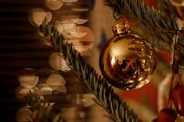 Weihnachtsbaum / A Trimmed Tree