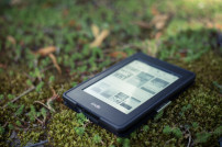 Kindle im Gras