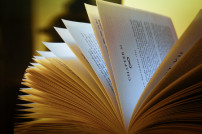 Buch, Nahaufnahme