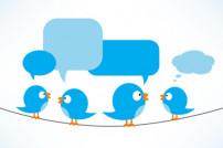 Twitter-Vögel