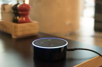 Echo Dot im Einsatz